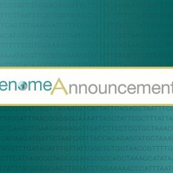 Genome announcements