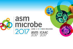 ASM 2017-1