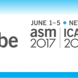 395953677ASM Microbe 2017 - American Society For Microbiology Conference-1024x272 (1)